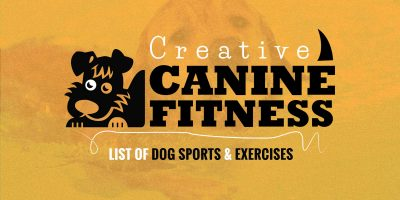 dog sports and exercises