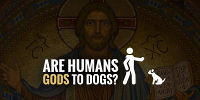 humans gods to dogs