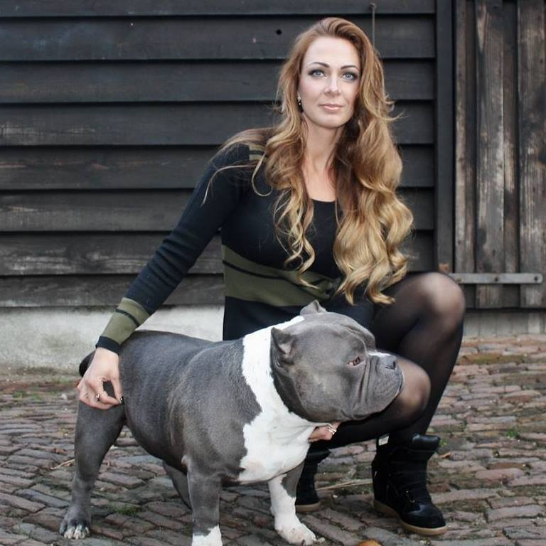american bully interview
