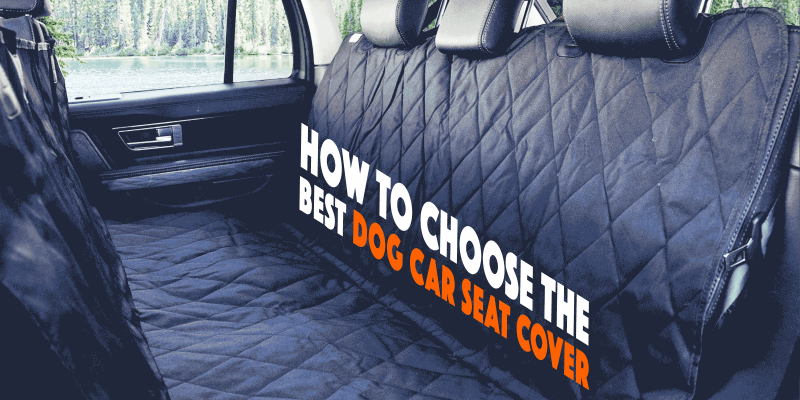 3 Best Dog Car Seat Covers For SUVs Cars And Trucks