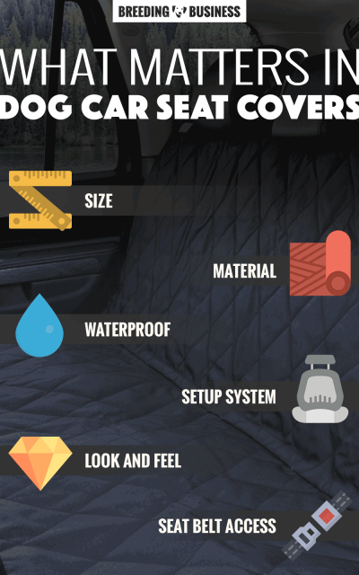 dog car seat covers infographic