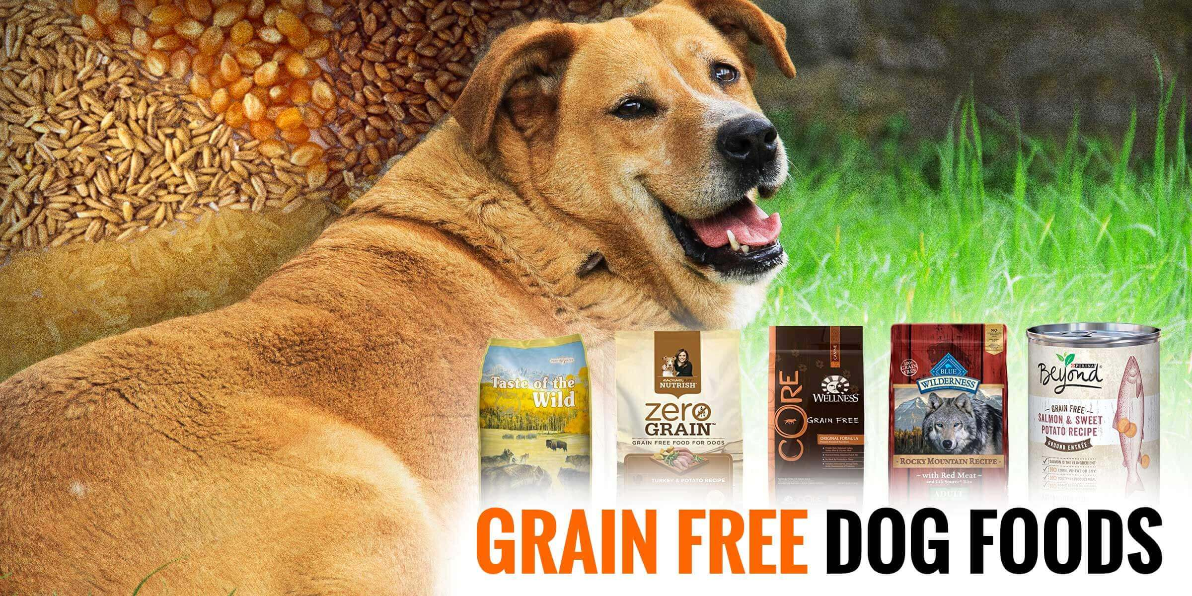 5 Best Grain-Free Dog Foods