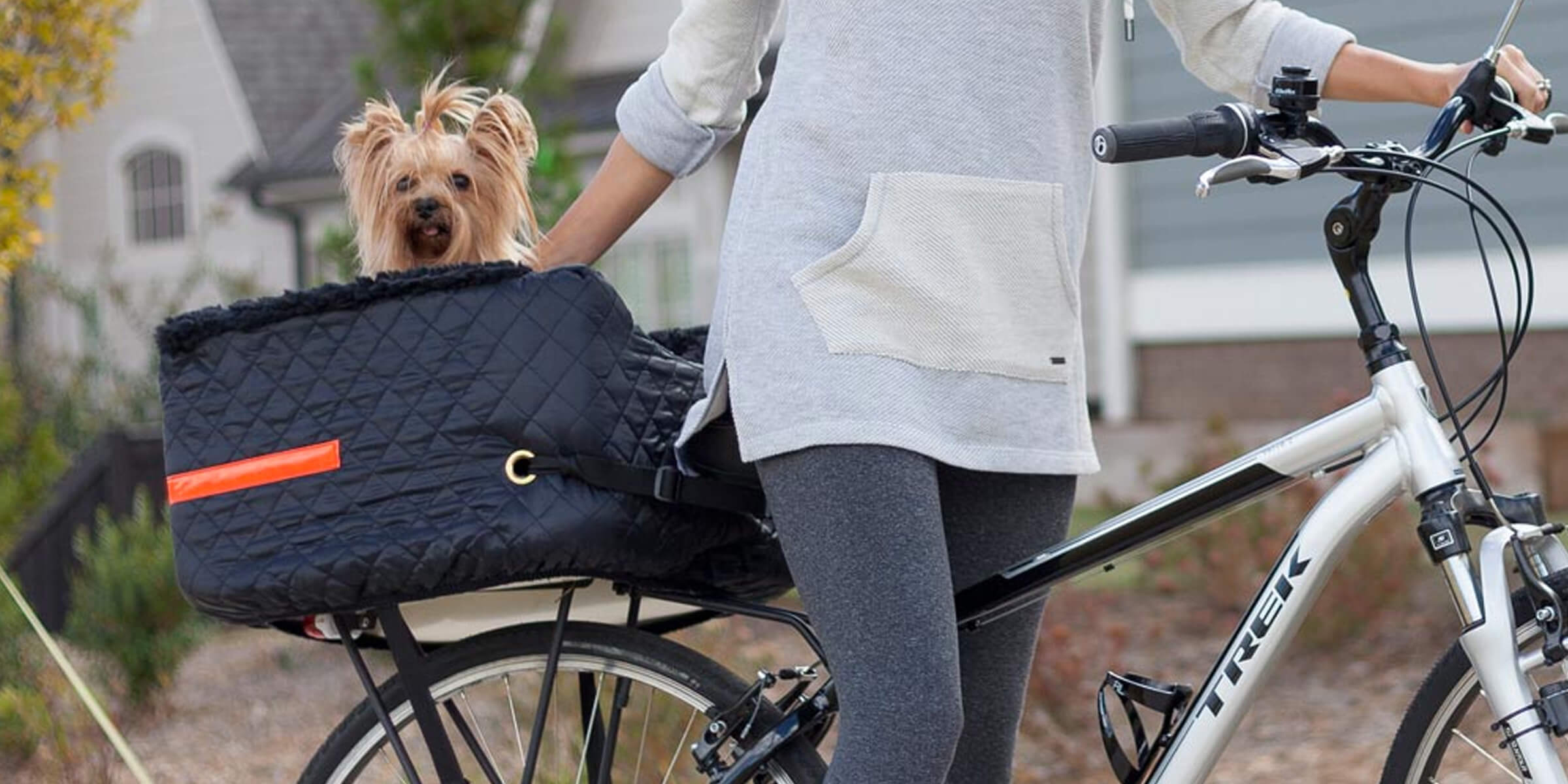 Top 5 Best Dog Bike Carriers W Buying Guide And Reviews