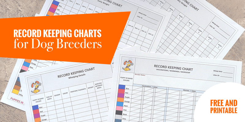 dog health record template - record keeping charts for breeders free printable puppy