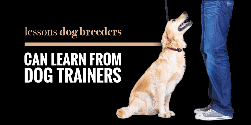 Lessons Dog Breeders Can Learn From Dog Trainers