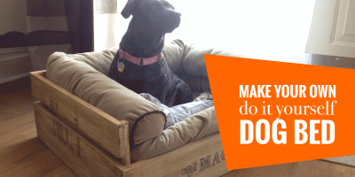 best DIY dog beds