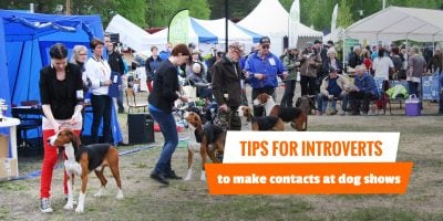 9 Tips To Make Contacts During Dog Shows
