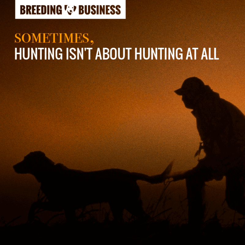 hunting dogs quote