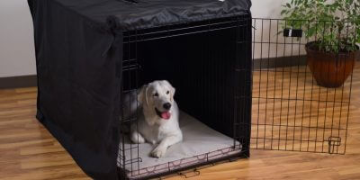 5 Best Dog Kennel Covers – Buying Guide, Tips & Reviews