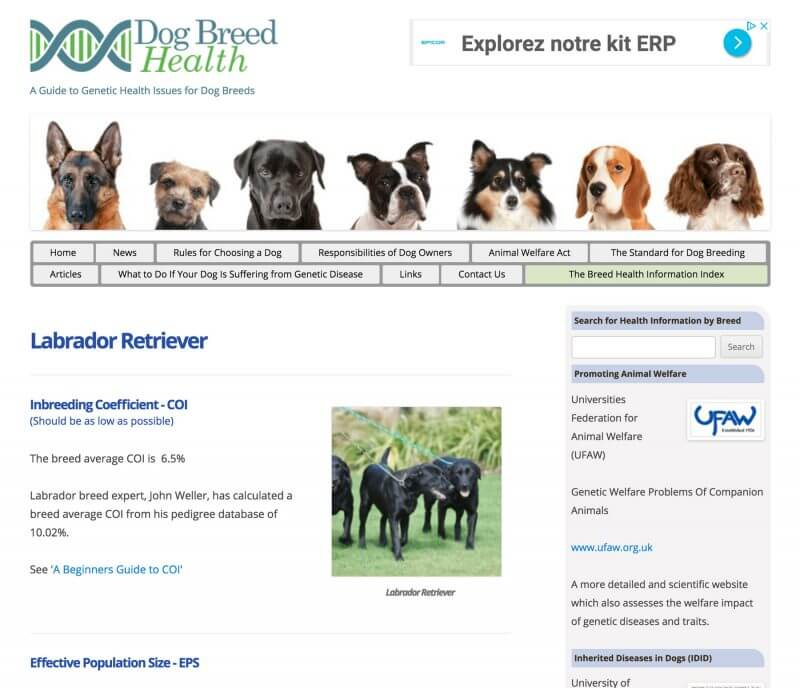 The Dog Breed Health website.