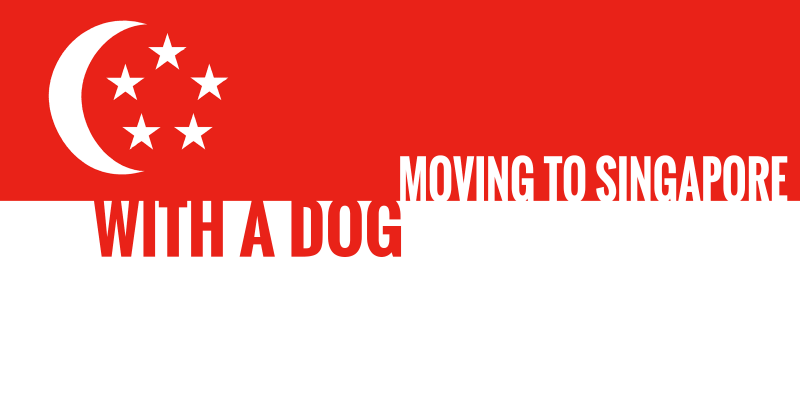 How To Move To Singapore With Your Dog