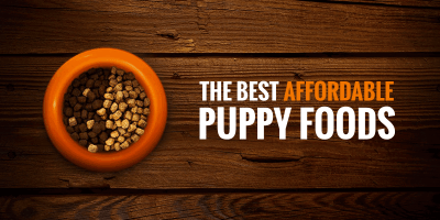 Best Cheap Puppy Foods