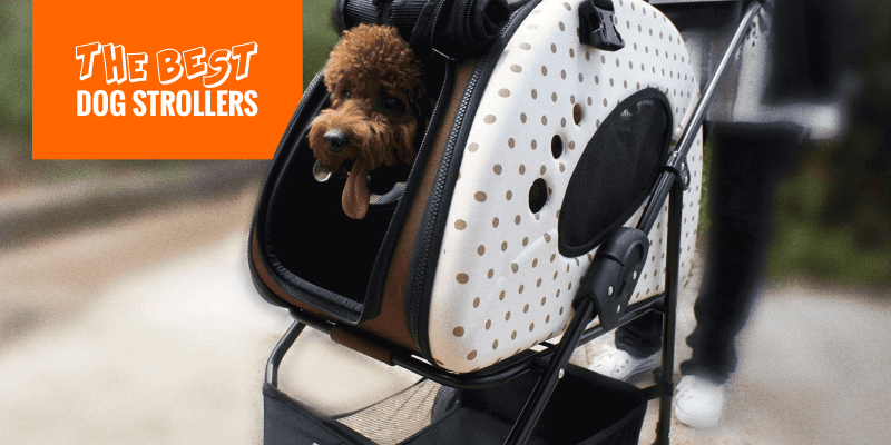 Best Dog Strollers (Buying Guide and Reviews)