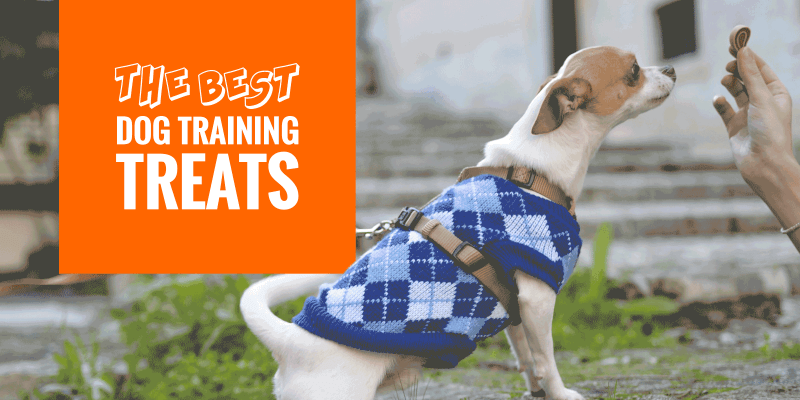 Top 10 Best Dog Training Treats For Adults & Puppies