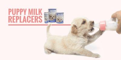 Top 5 Best Puppy Milk Replacers