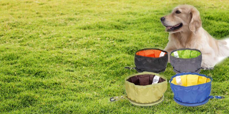 Best Collapsible Dog Bowls For Travel