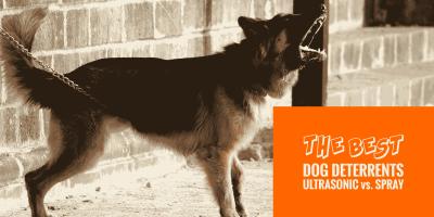 Top 5 Best Dog Repellents — Deterrent Sprays vs Ultrasonic Repellers