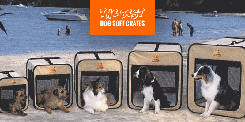 Top 6 Best Dog Soft Crates — Buying Guide (2019 Reviews)