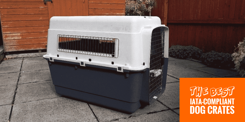 5 Best Iata Compliant Dog Crates For Air Travel