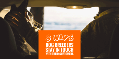 Ways Dog Breeders Stay In Touch With Their Customers