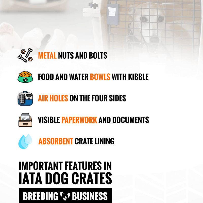 Important Features For Airline-Approved Dog Crates