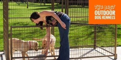 7 Best Outdoor Dog Kennels — For Dog Owners, Farmers & Breeders