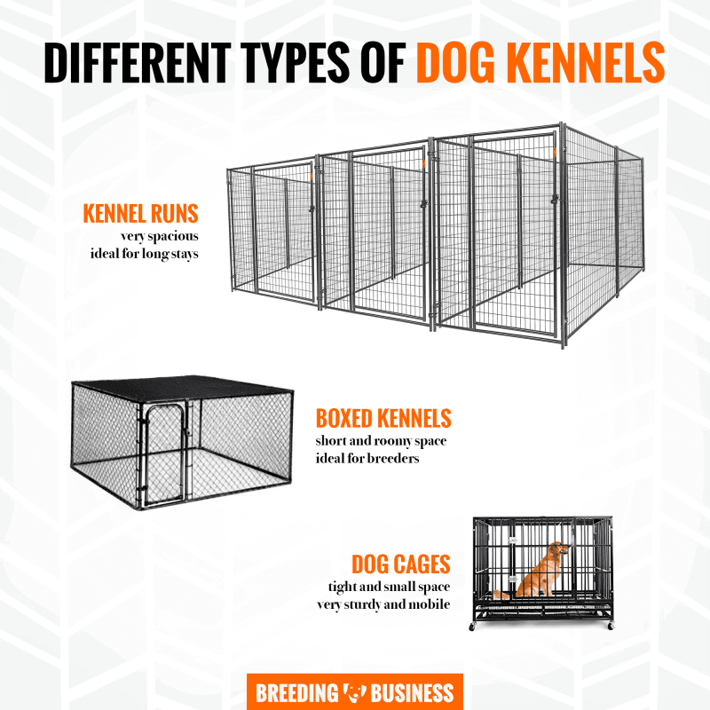 different types of dog kennels