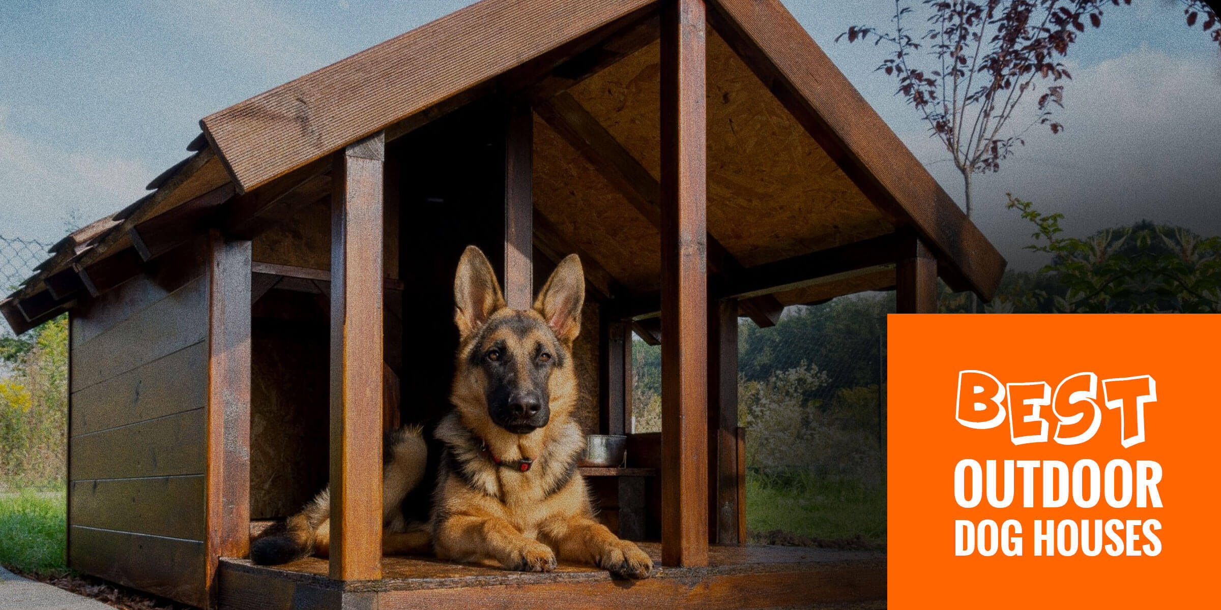 Top 6 Best Outdoor Dog Houses Wired