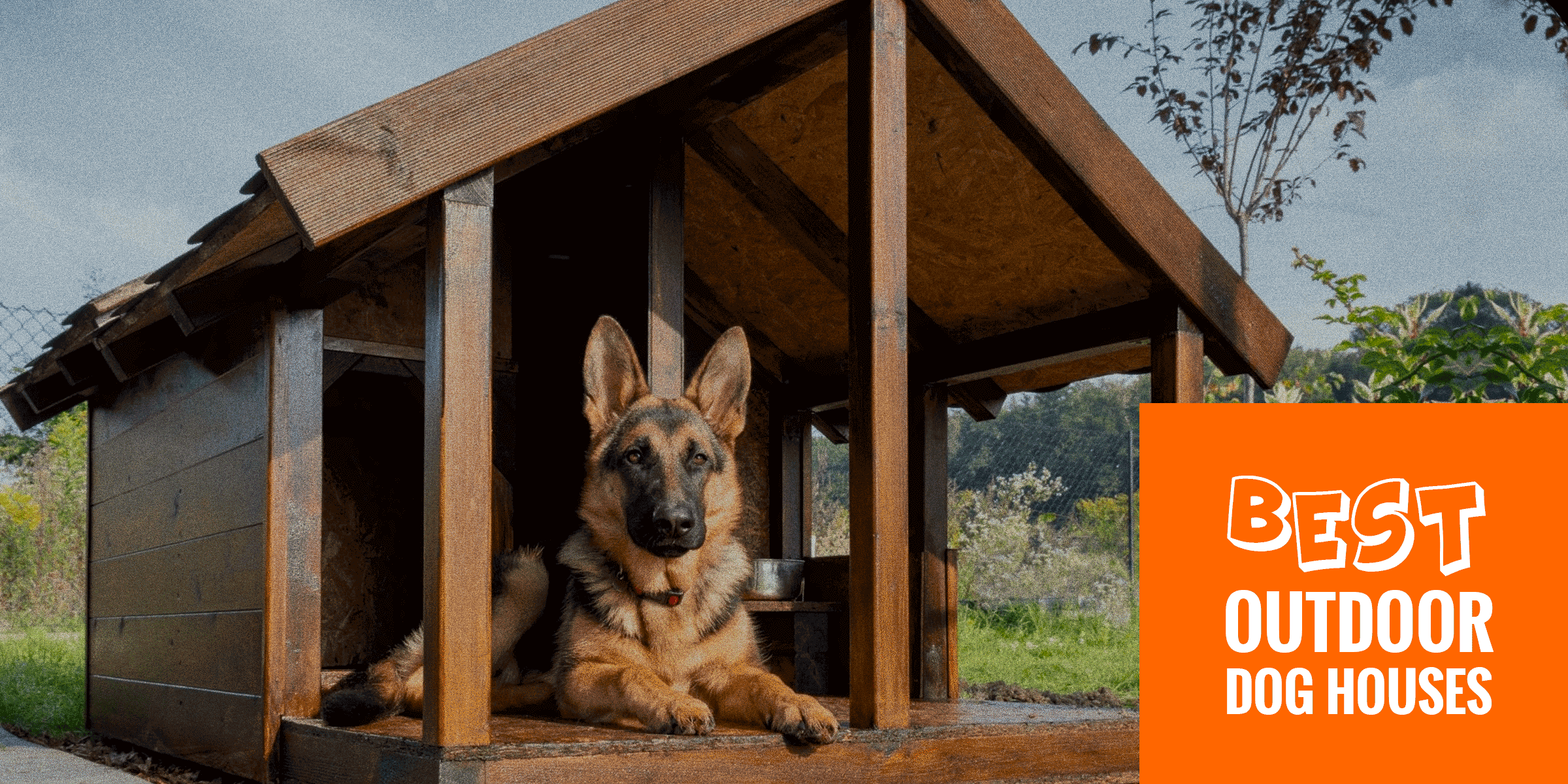 Top 6 Best Outdoor Dog Houses Wired Wooden Foldable