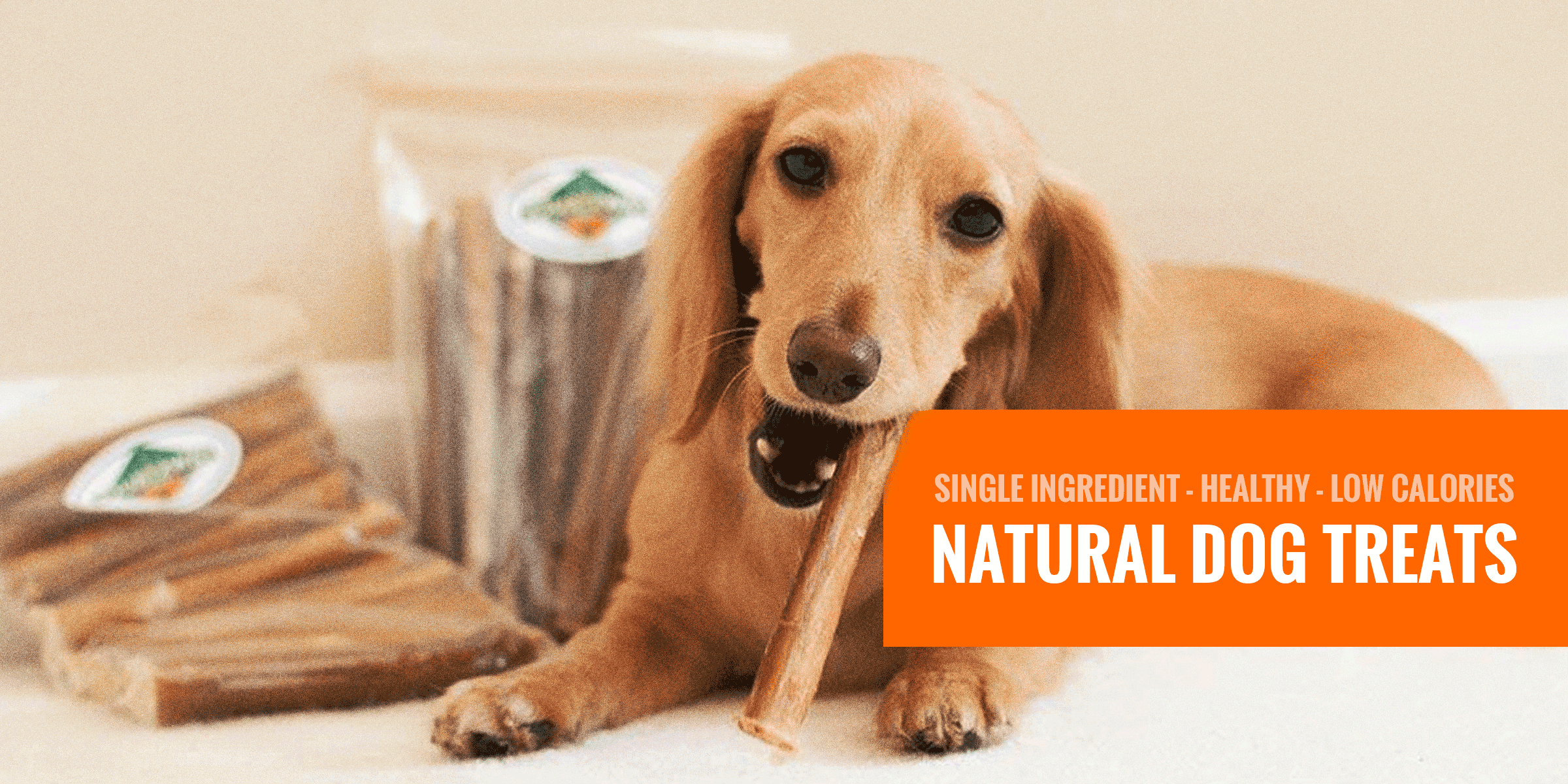 10 Best Natural Dog Treats Single Ingredient Grain Free