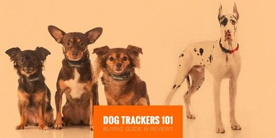 Dog Trackers 101 — Technologies, Prices & Buying Guide
