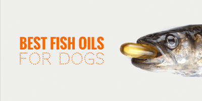 Top 5 Best Fish Oils for Dogs — Cod Liver Oil, Salmon Oil, DHA, EPA & DPA!
