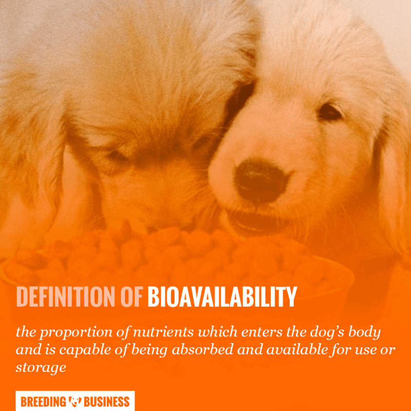 bioavailability of dog food