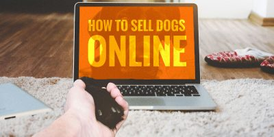 how to sell dogs online