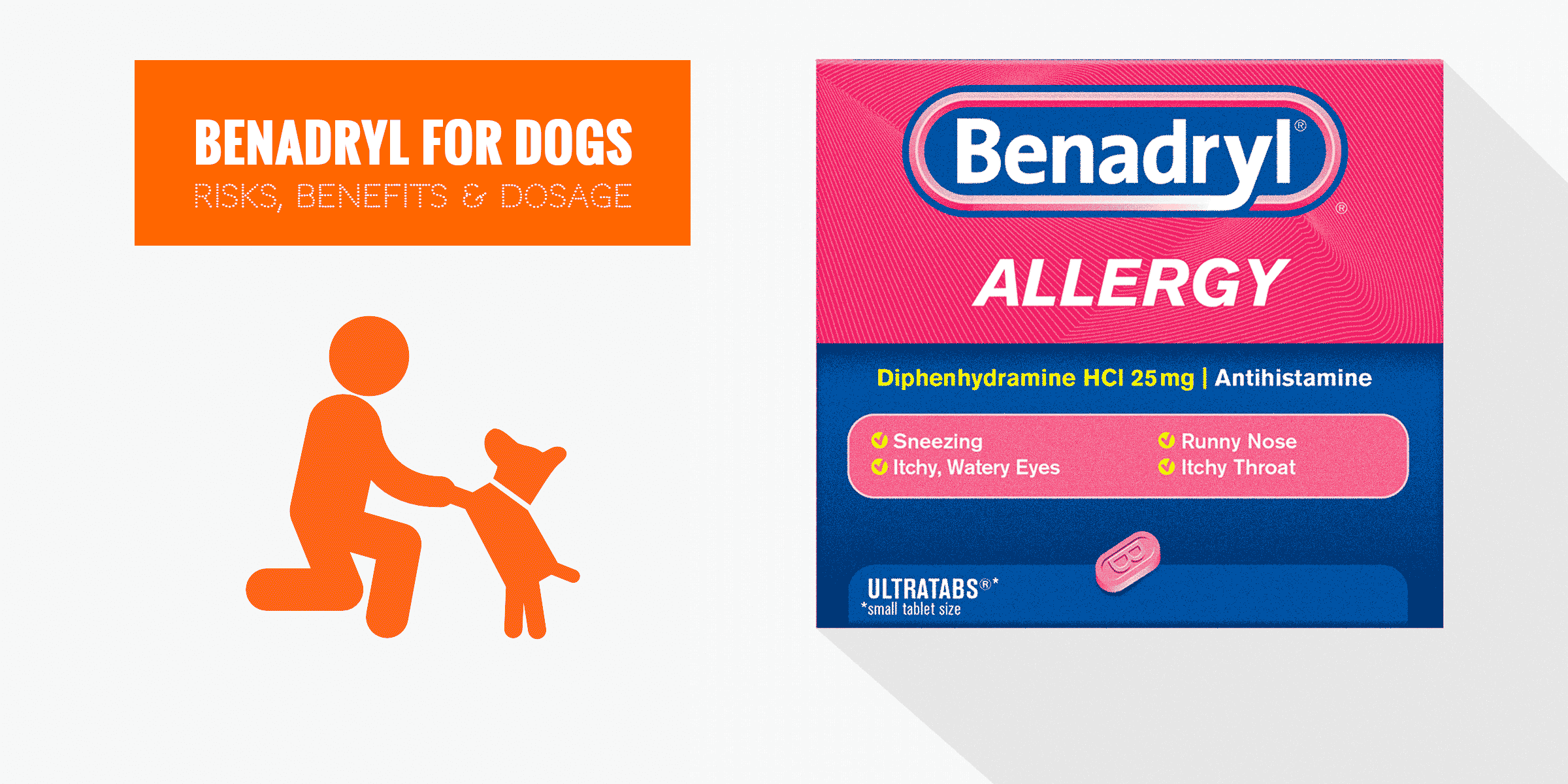 Benadryl For Dogs — Usage, Safety, Dosage, Side Effects