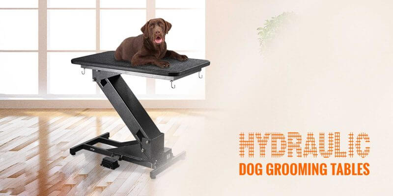 Affordable Dog Grooming Table Arm Breeding Business