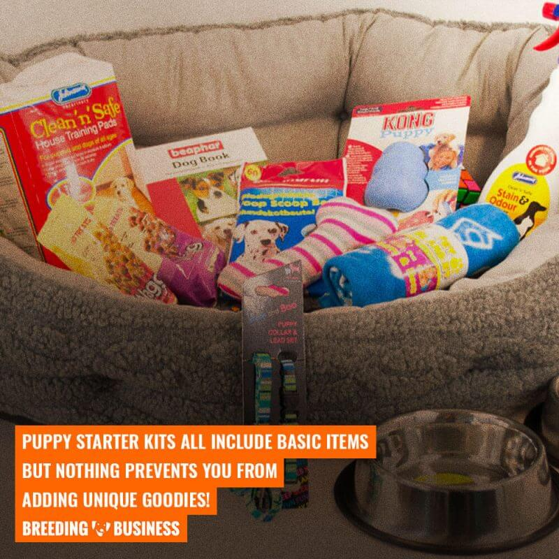 puppy starter kit list