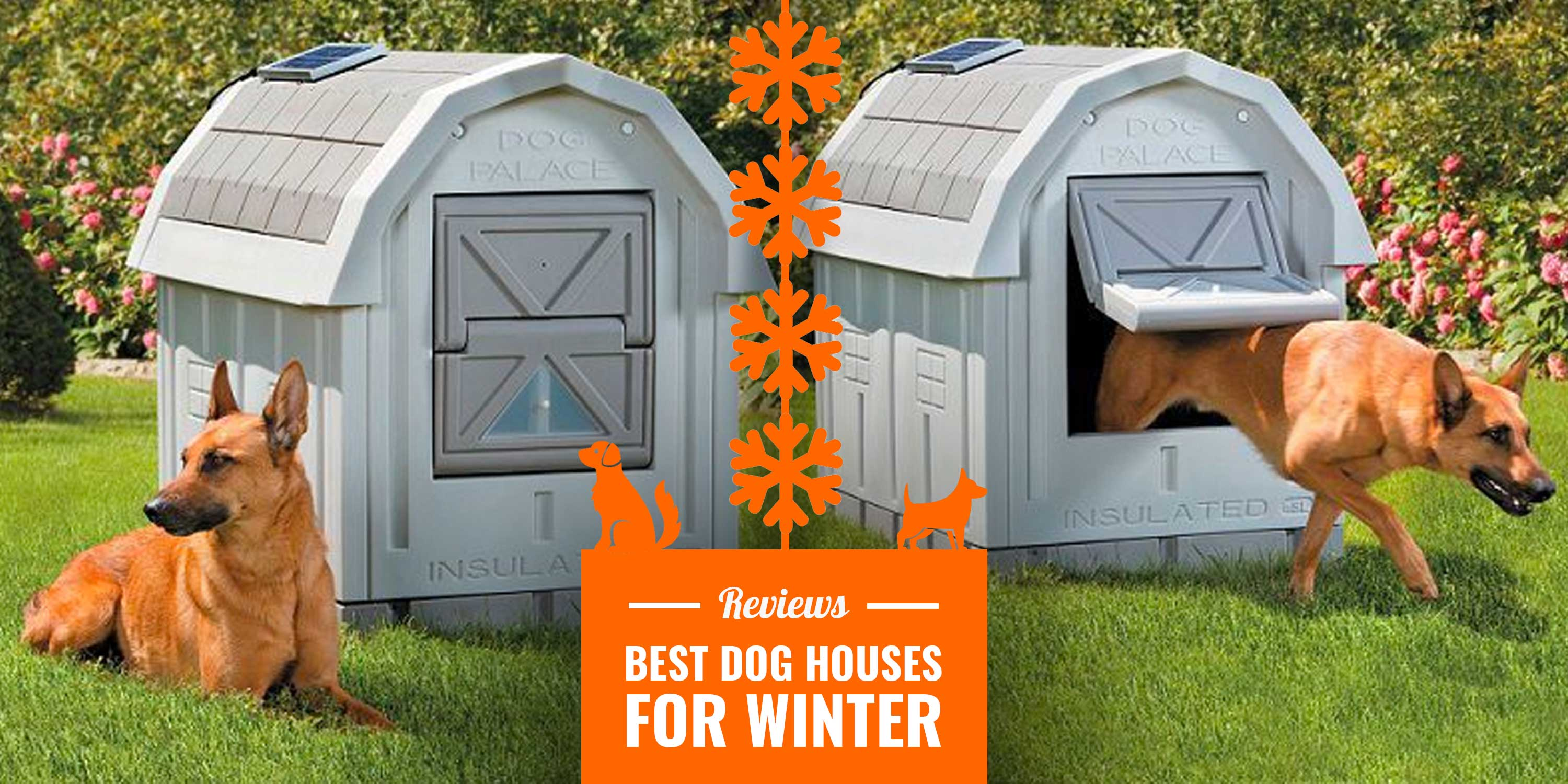 10 Best Dog Houses For Winter Reviews Insulation Tips Diy