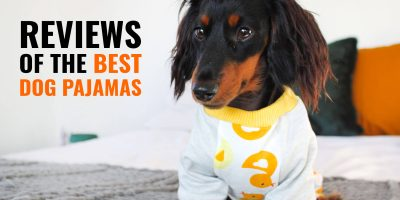 Best Dog Pajamas