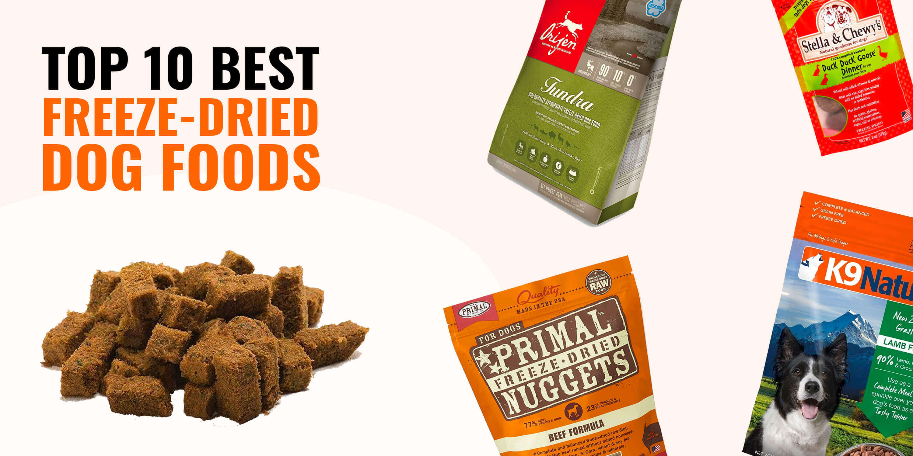 Best Freeze-Dried Dog Foods – Reviews