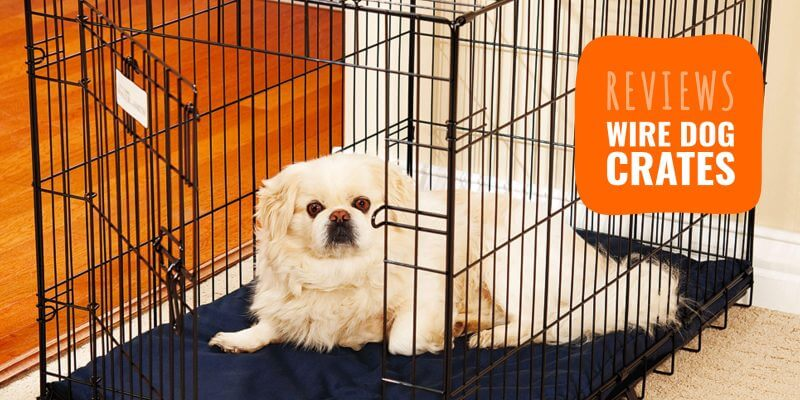 Top 10 Best Wire Dog Crates + Buying Guide