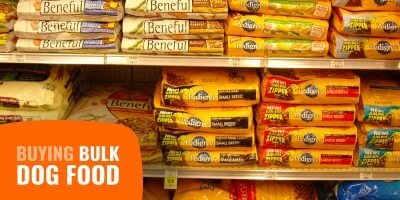 Buying Bulk Dog Food – Prices, Deals, Wholesale, Pros & Cons