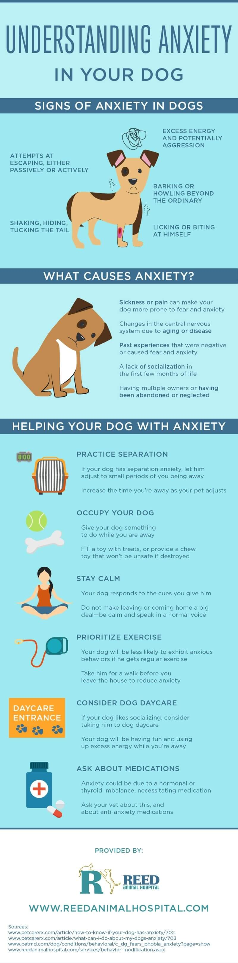 pet anxiety (infographic)