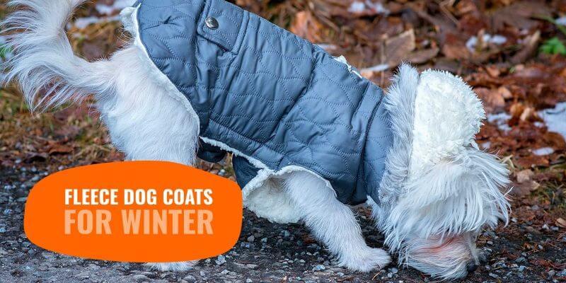 Top 5 Best Fleece Dog Coats for Winter