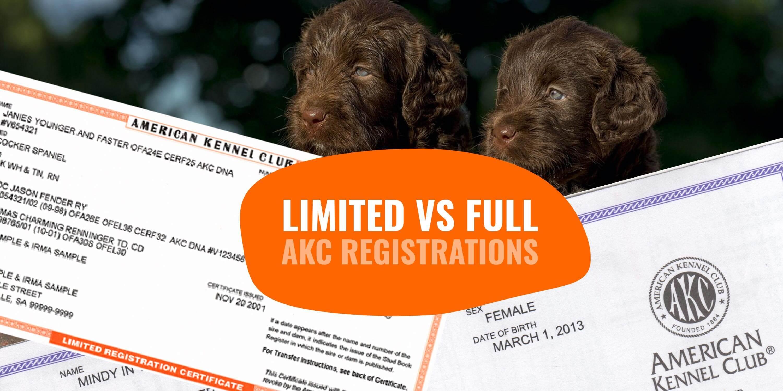 Limited AKC Registration vs Full AKC Registration — Breeding
