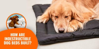 How Are Indestructible Dog Beds Built?