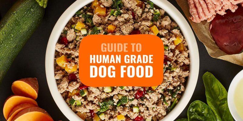 human grade dog foods