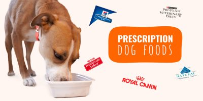 Prescription Dog Foods – Reviews, Cost, Brands, Benefits & FAQ