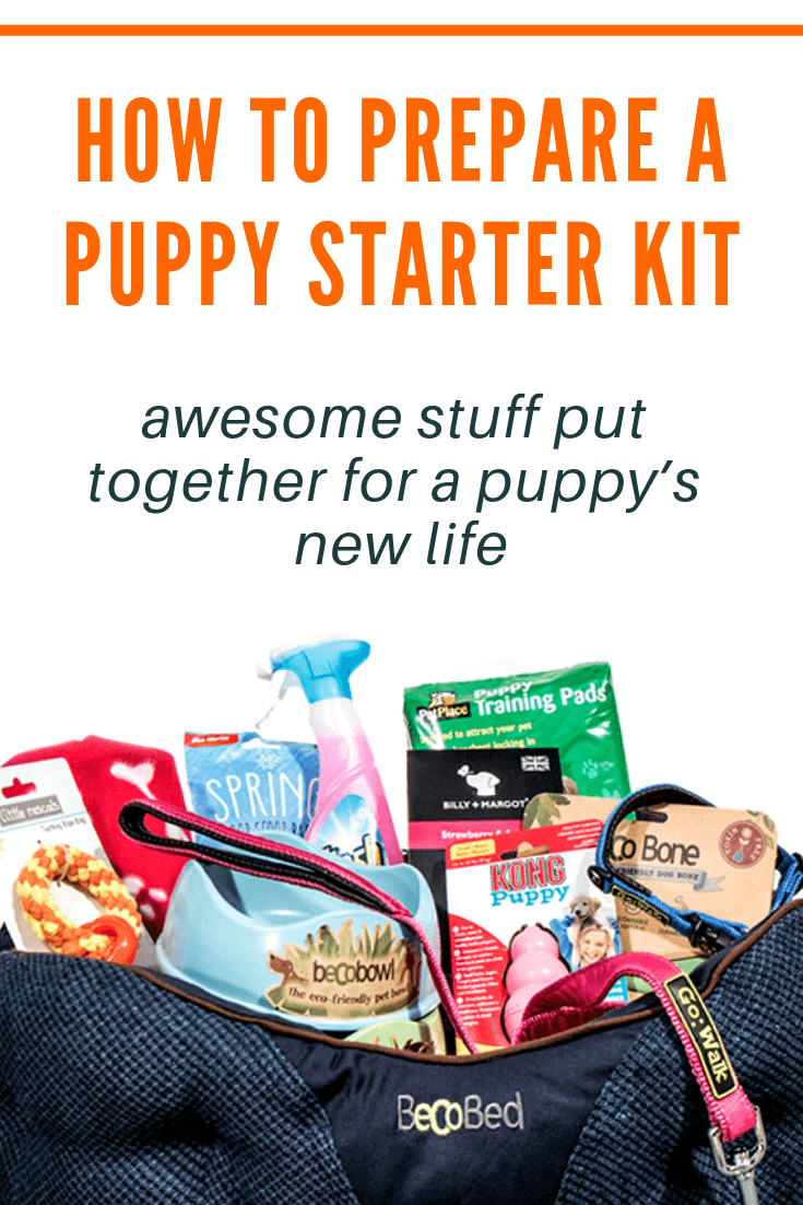 puppy starter kits – pin