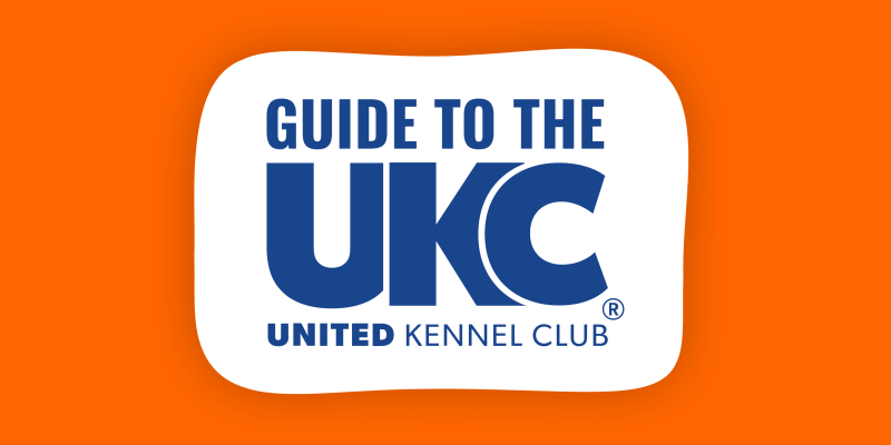 United Kennel Club – History, Purposes, Breeds & Registrations